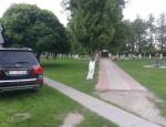 parkovka nomer
